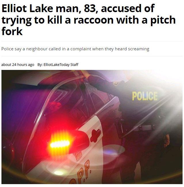 邻居举报!加拿大83岁大爷为民除害却被警